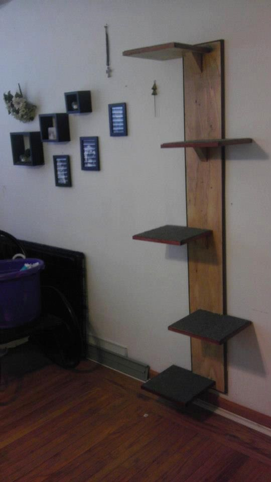 Wall Mounted Cat Tree By Pawprintconstruction On Etsy 150 00 For