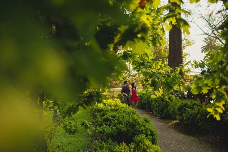 Preboda novios en Parque, Parque Nuestra señora de Gabriela, fotógrafo matrimonio Santiago, Fotógrafo matrimonio Viña, fotógrafo matrimonio Concepción, novios caminando en el campo