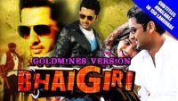 Bhaigiri (Ishq) 2016 Full Hindi Dubbed Movie | Nitin, Nithya Menen, Ajay, Sindhu Tolani