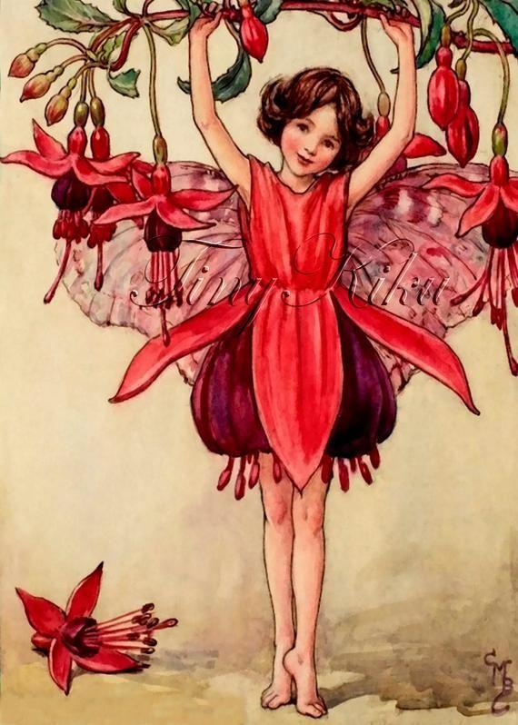 Fuchsia Fairy Vintage Cicely Mary Barker Art Print Etsy In 2020 Flower Fairies Cicely Mary Barker Vintage Fairies