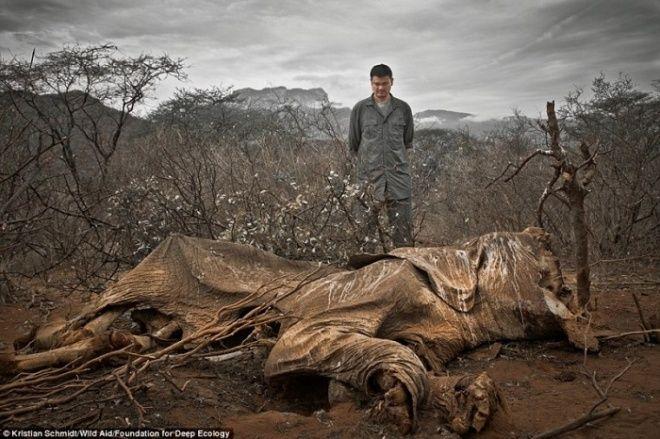 18 fotó arról, hogy mekkora veszélyben vagyunk   CivilHír