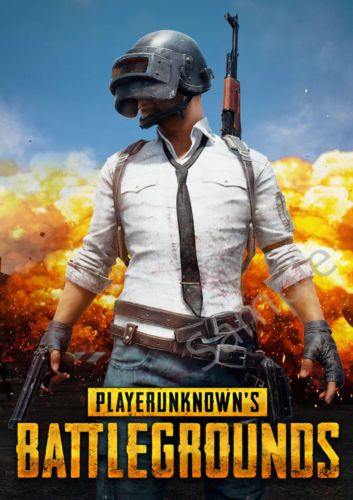 Player Unknowns Battlegrounds Game Poster Wall Art Gaming Print A3