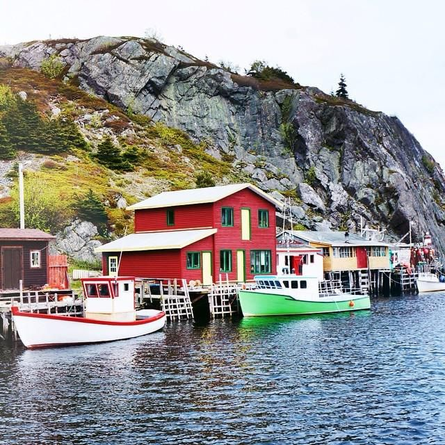 RT @evelynsk: Quidi Vidi Village, Newfoundland  Tasted some iceberg beer at the Quidi Vidi Brewery #newfoundland #…