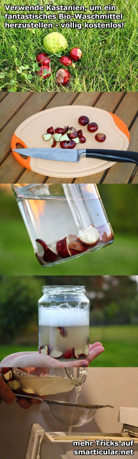 Waschmittel aus Kastanien selber herstellen - vollkommen kostenlos!