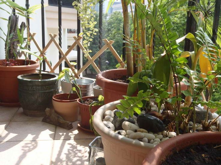 Awesome Small Balcony Ideas ~ http://lovelybuilding.com/small-balcony-ideas-endless-journey-of-beauty/