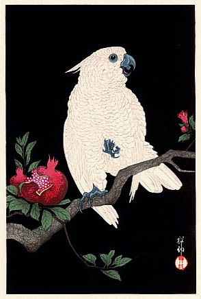 hanga gallery . . . torii gallery: Pomegranate and Parrot by Ohara Koson