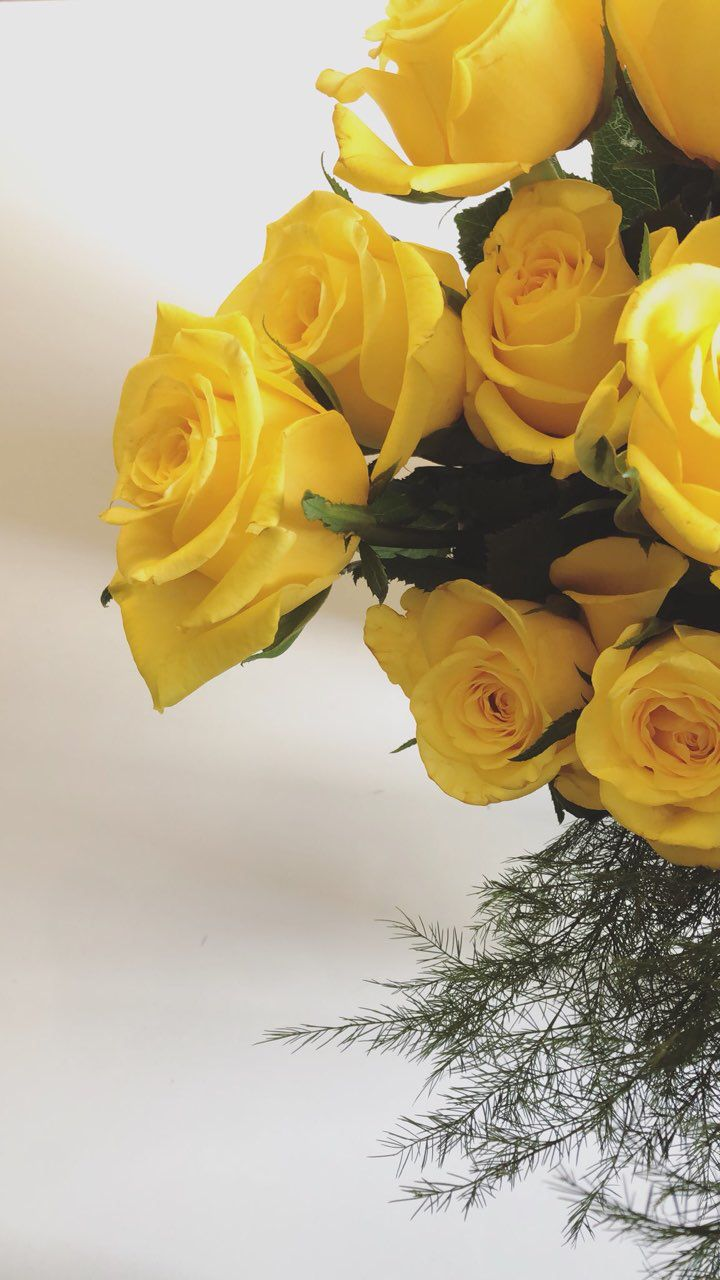 Pin By Malak On Ro0ofa 0 Snapchat Beautiful Flowers Images Flower Pictures Yellow Flowers