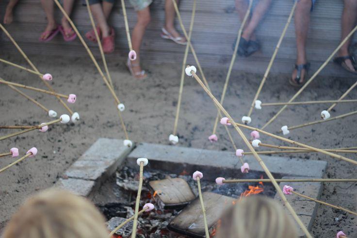 Kampvuur avonden in het hoogseizoen op camping de Lakens. Broodjes bakken, muziek maken of spannende verhalen vertellen!