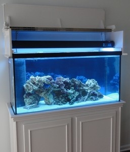 Aquarium hood plans