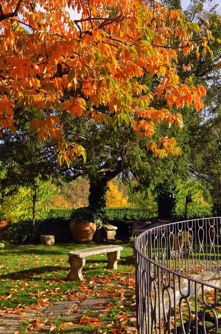 October is magic at Casafrassi