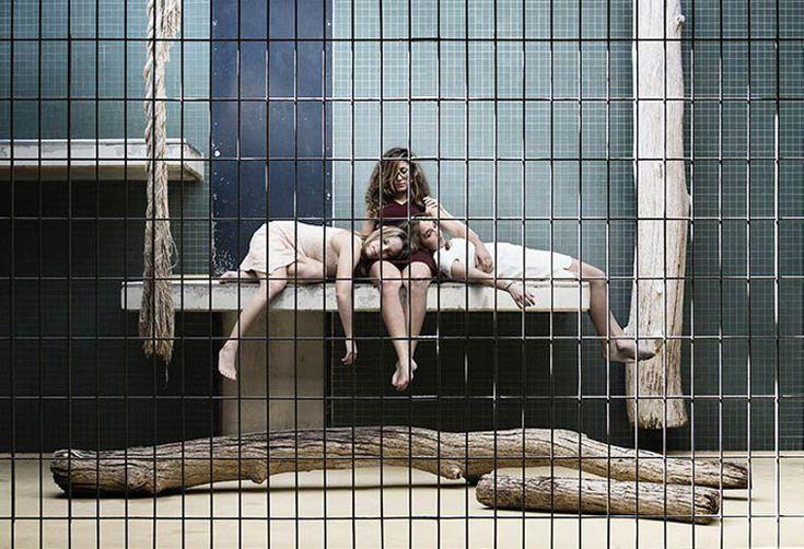 Le projet Human Zoo met les humains dans les cages à la place des animaux