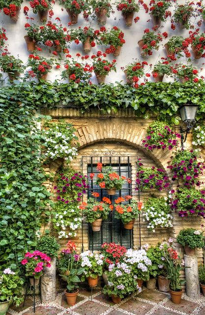 Patio, Cordoba, Andalusia, Spain - previuos pinner wrote: just what my memories of Spain look like - one of mine too!
