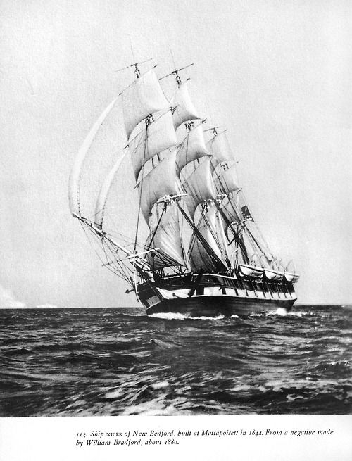 Gorgeous photo of the whaleship Niger of New Bedford, built in 1844. You can clearly see her fake gunports from the port (larboard) side. Most whaleships had these painted on with black and white paint to discourage pirates - the thinking was that the pirates would mistake the ships for naval vessels. Of course, once the pirates got close enough to see the whaleboats hanging from the davits, it would be clear that this was no armed frigate.  Scan from Albert Cook Church's Whale Ships and Wh