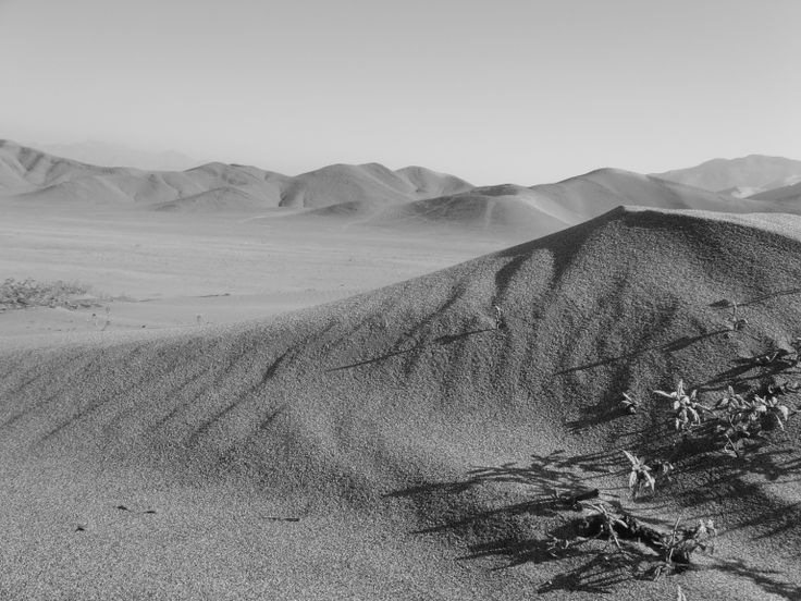 Desierto Copiapo Chile