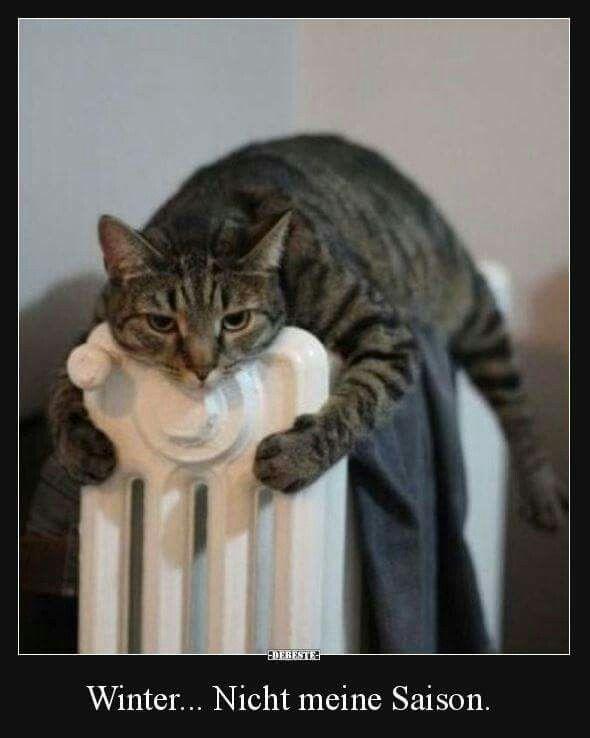 Winter... not my season... 🤣