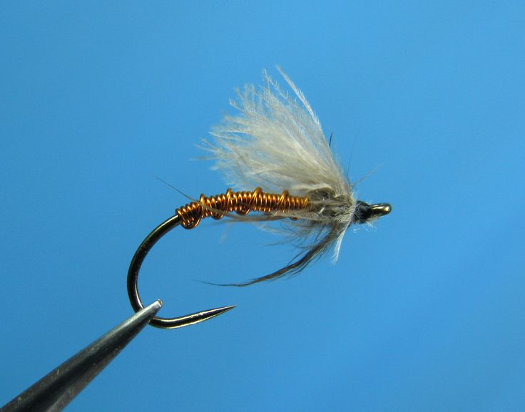 emerger fly tying pattern gallery - William's Favorite