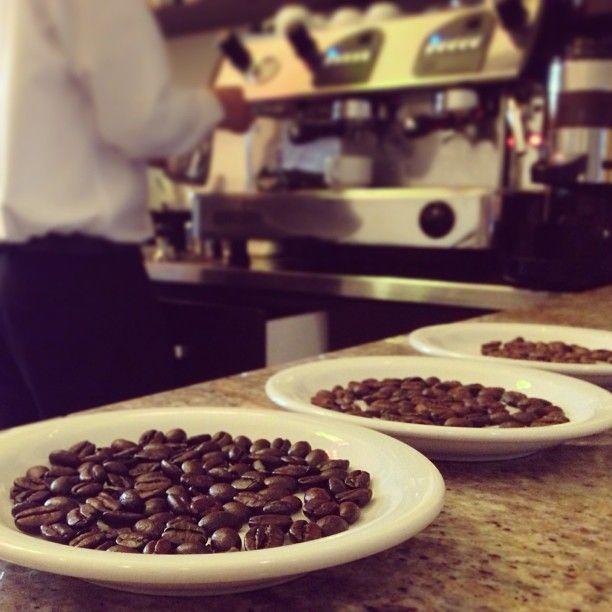 El tueste más oscuro de café es el espresso, también conocido como tueste italiano. Posee más aroma y cremosidad que otros tuestes de granos de café. Es ideal para crear un exquisito espresso o cappuccino @Stizzoli