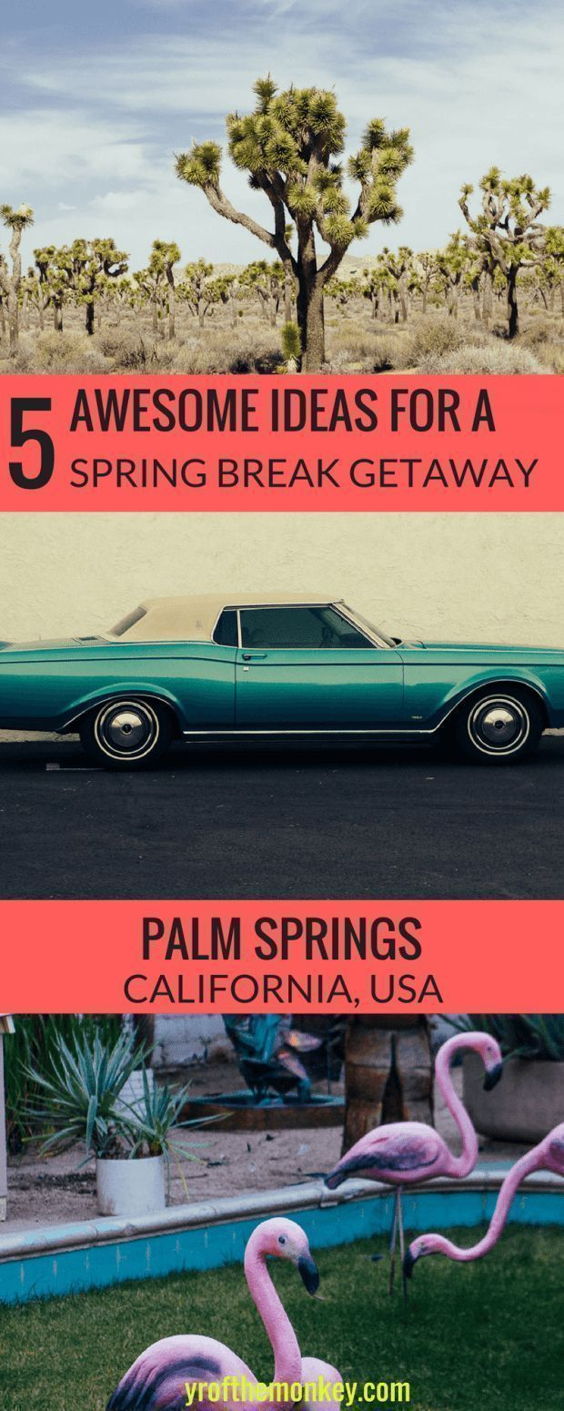 Looking for a perfect spring break getaway destination? Look no further than Palm Springs, in southern California, USA. This Spring break Palm springs guide has five terrific idea for a romantic getaway to Palm Springs. Save this weekend trip to Palms Springs post to your USA or California guide for later! Palm springs vacation| California travel | Mojave desert | USA travel | Joshua Tree National Park| #palmsprings #california #joshuatree #californiatravel #romanticvacationideas