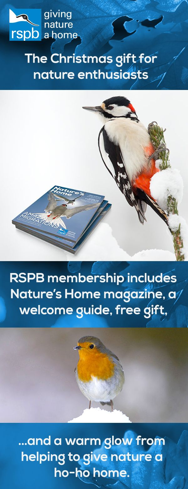 Looking For The Perfect Christmas Gift That Someone In Your Life Who Loves Wildlife