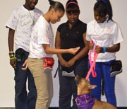 I cannot wait to earn my CHES certificate!! In October 2012, Humane Society University's School of Continuing Education (SCE) began a partnership with the Society for the Prevention of Cruelty to Animals (SPCA) Serving Erie County in Buffalo, NY to evaluate its humane education programming.
