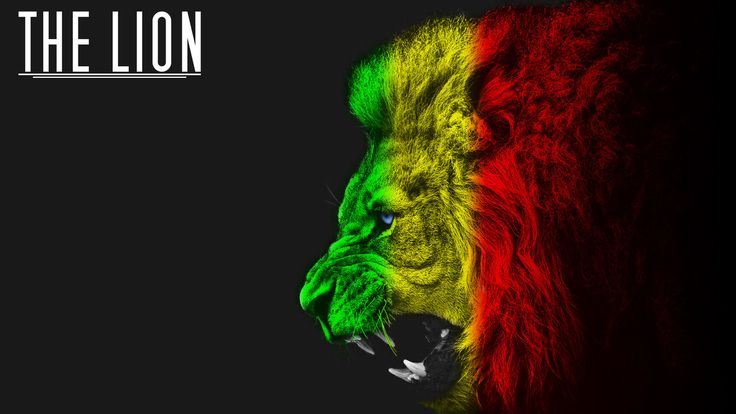 rastafarian lion wallpaper - photo #18