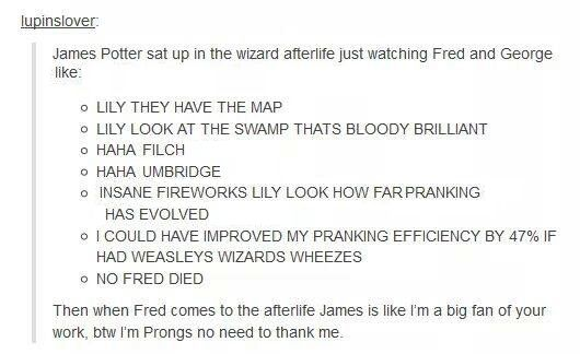 Happiest idea I've ever read regarding Fred's death. James is the guardian angel of pranksters :)