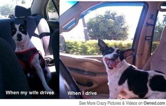 When I drive VS My wife driving