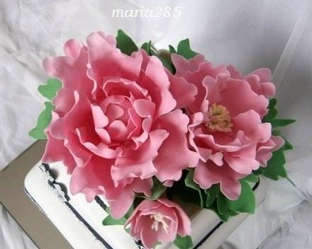 Pivonky bez drôtikov , Kvety, fotopostupy | Tortyodmamy.sk