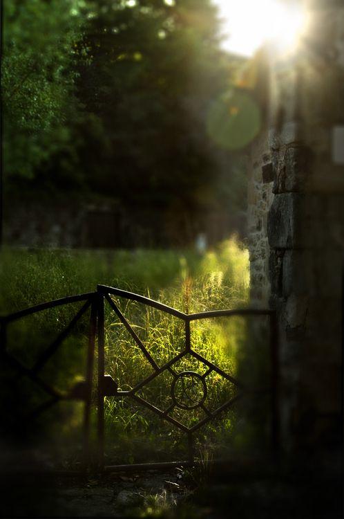 26.01.2013  Y dejar de lado la vereda de la puerta de atrás  por donde te vi marchar  como una regadera que la hierba hace que vuelva a brotar  y ahora es todo campo ya.