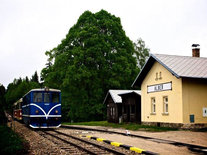 Alber, narrow-gauge railway train is just arriving