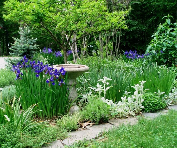 A May 2011 bed in joene's garden.Cottages Gardens, Outdoor Gardens Ideas, Gardens Thoughts, Birdbaths, Bird Baths, Iris, Birds Bath, Gardens Flow, Dreams Gardens