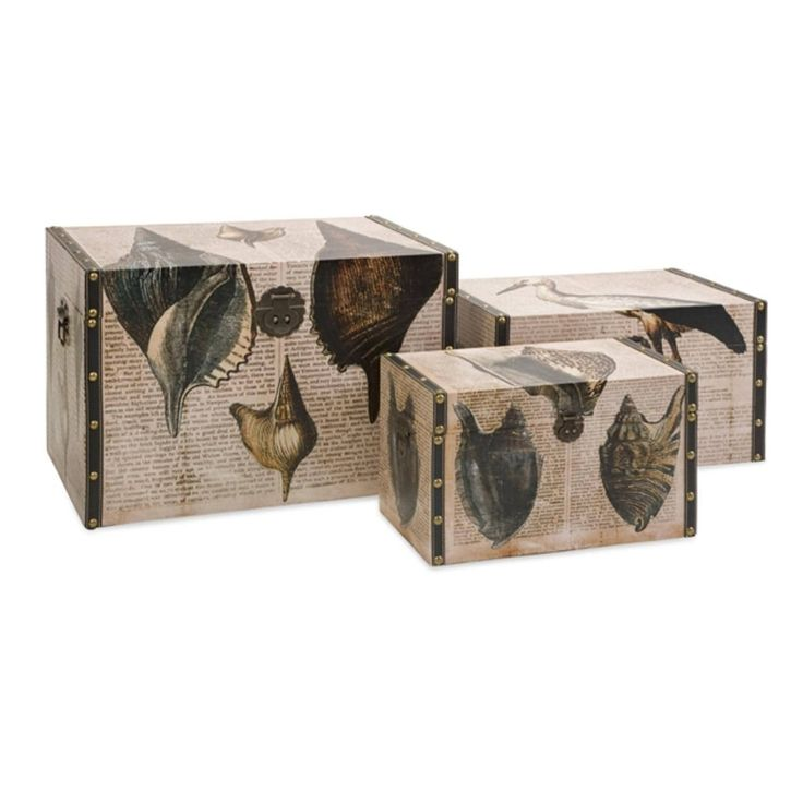 Set of 3 Vintage Inspired Black Script and Sea Shell Beach Style Storage Box Trunks 28 - brown