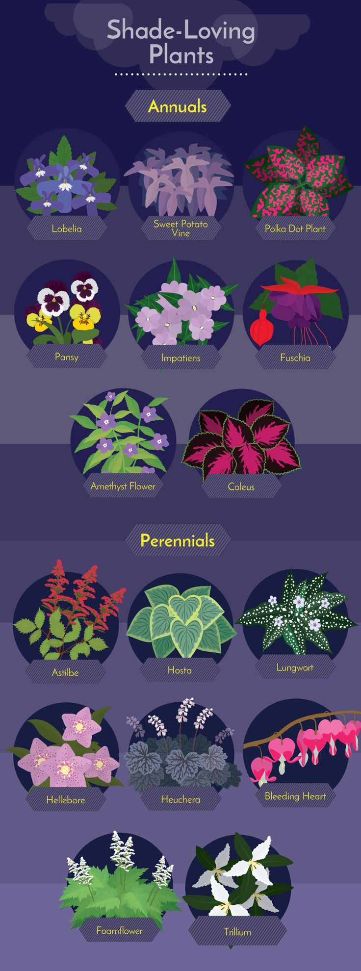 Shade-Loving Plants - Working With Challenging Garden Styles