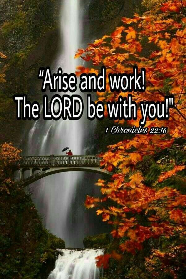 Image result for 1 Chronicles 22:16