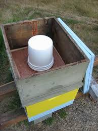 Περίσκεψις: Η ανάγκη των μελισσών για τροφοδοσία με νερό