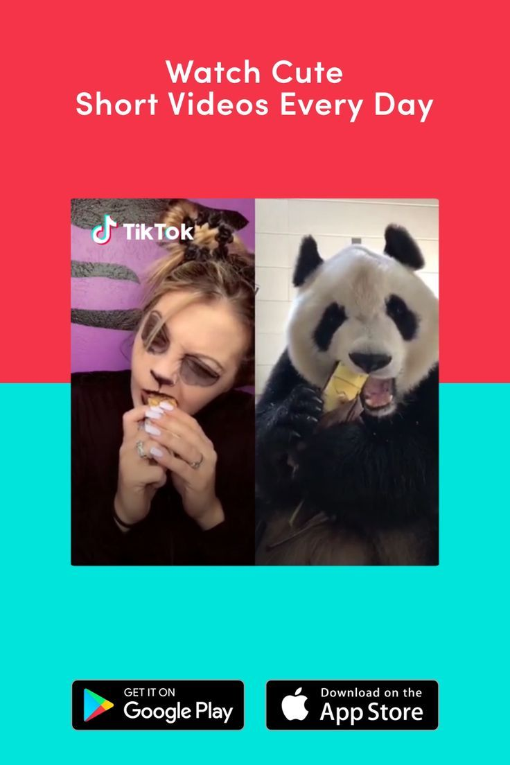 Get Inspired By The World On Tiktok Today Download Now To Find More Funny Videos And Ideas Animal Funny Videos Engracado Funny