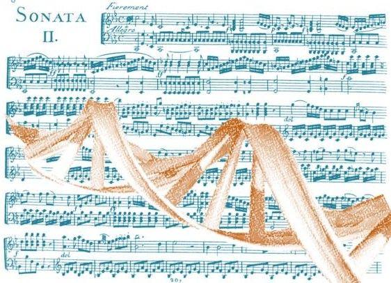 La música en los genes. Los estudios genéticos realizados indican que tanto factores hereditarios, como ambientales, o la interacción entre ambos, contribuyen a las habilidades musicales, y que las aptitudes varían tanto entre las diferentes personas, como entre los diversos componentes de la música dentro de un mismo individuo...*´♫ #Ciencia #curiosidades #investigaciones #lamusa