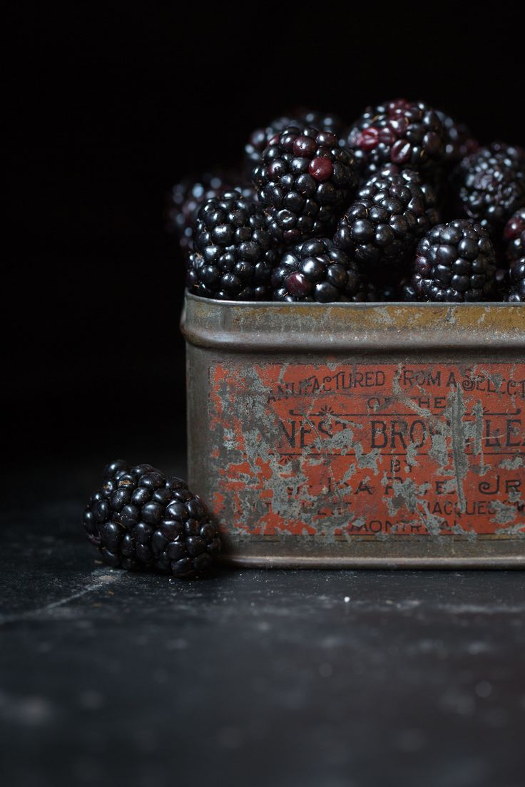 Evening light and and a tin of blackberries. Simple pleasures….
