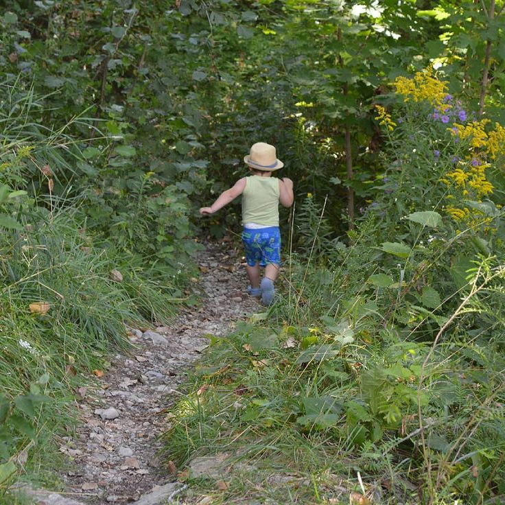#brave #outdoor #adventure #toddler #trail #forest #nofear #grandriver #brantford #ontario #canada #familyfun #inthesunThese are my personal photos from Flickr!