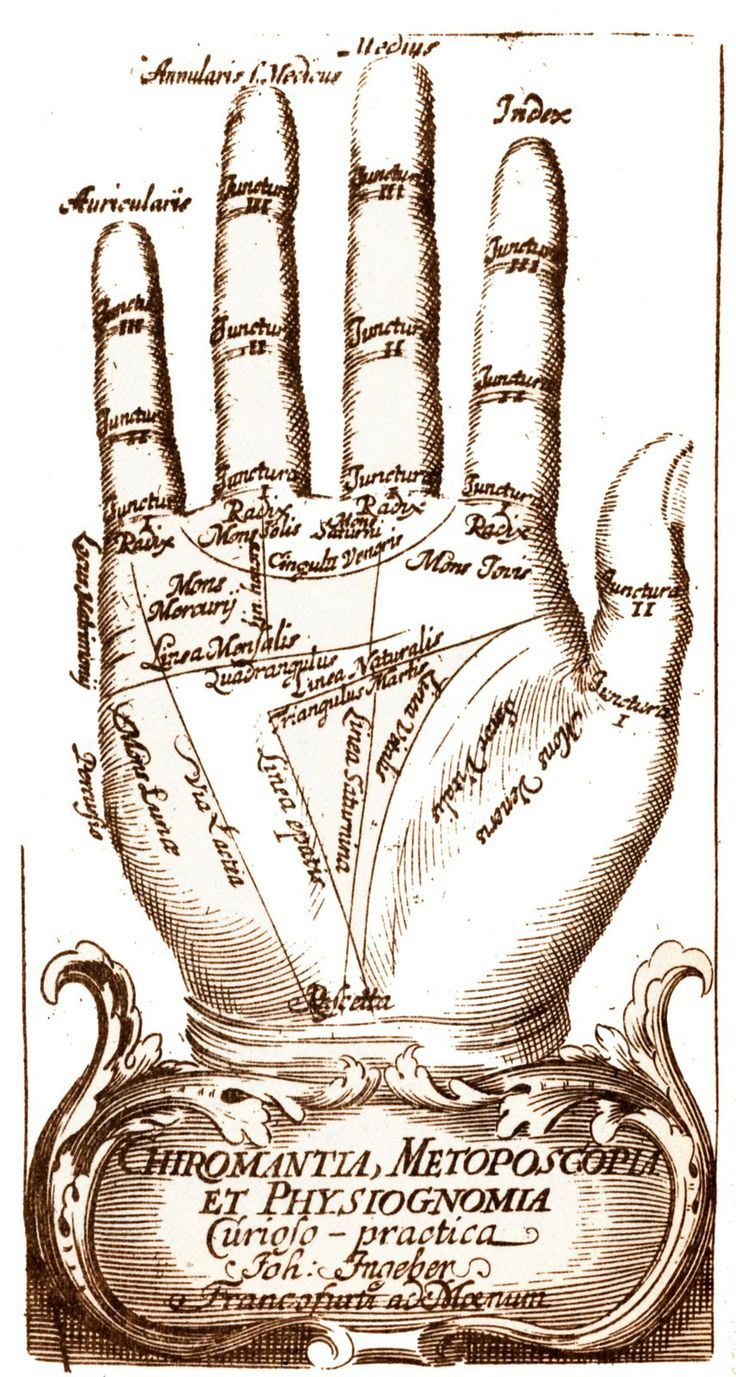 Vintage and ancient hand diagrams
