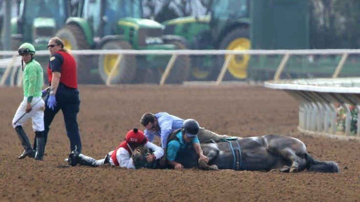 Petition · Lieutenant Governor Gavin Newsom: Outlaw Horse Racing In California · Change.org / https://www.change.org/p/lieutenant-governor-gavin-newsom-outlaw-horse-racing-in-california/sign?utm_source=action_alert_sign&utm_medium=email&utm_campaign=773149&alert_id=QTbDPcQGbT_u4gmcQPcjG04Nz7eT9NyOShLlVRn9ioLVOsvnmU%2BT%2Bw%3D