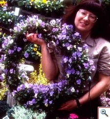 Living wreath made a Bemis Farms