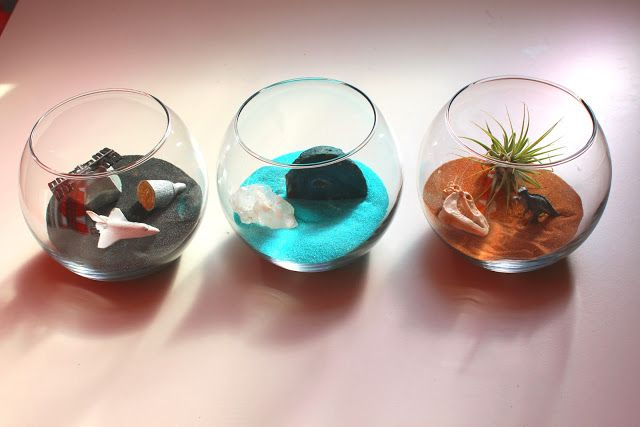 DIY Terrariums - video
