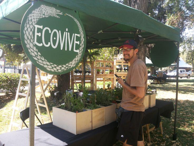 Montaje del stand de Ecovive en la Aldea Verde del Lollapalooza Chile 2015.