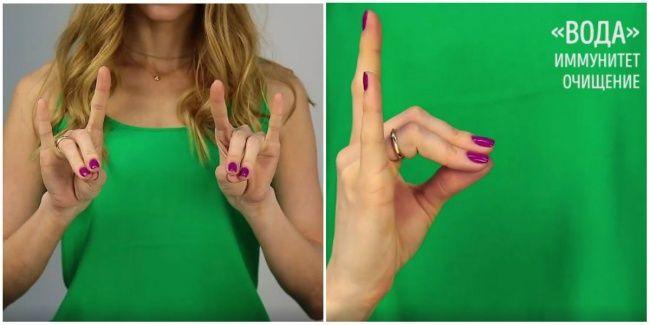 Соедините вместе подушечки больших, средних и безымянных пальцев каждой руки, указательные и мизинцы выпрямите. Это мудра очищения и энергии, она способствует поддержанию баланса организма, укреплению иммунитета.   Источник: http://www.adme.ru/svoboda-sdelaj-sam/7-uprazhnenij-jogi-dlya-palcev-kotorye-pomogut-sohranit-zdorove-organizma-1304415/ © AdMe.ru