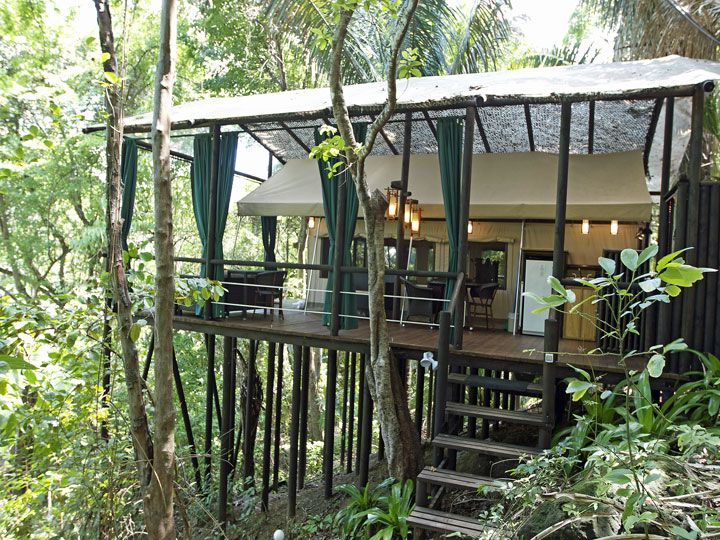 Ylang Tree Top Canopy Montezuma Costa Rica Rooms And Grounds In 2018