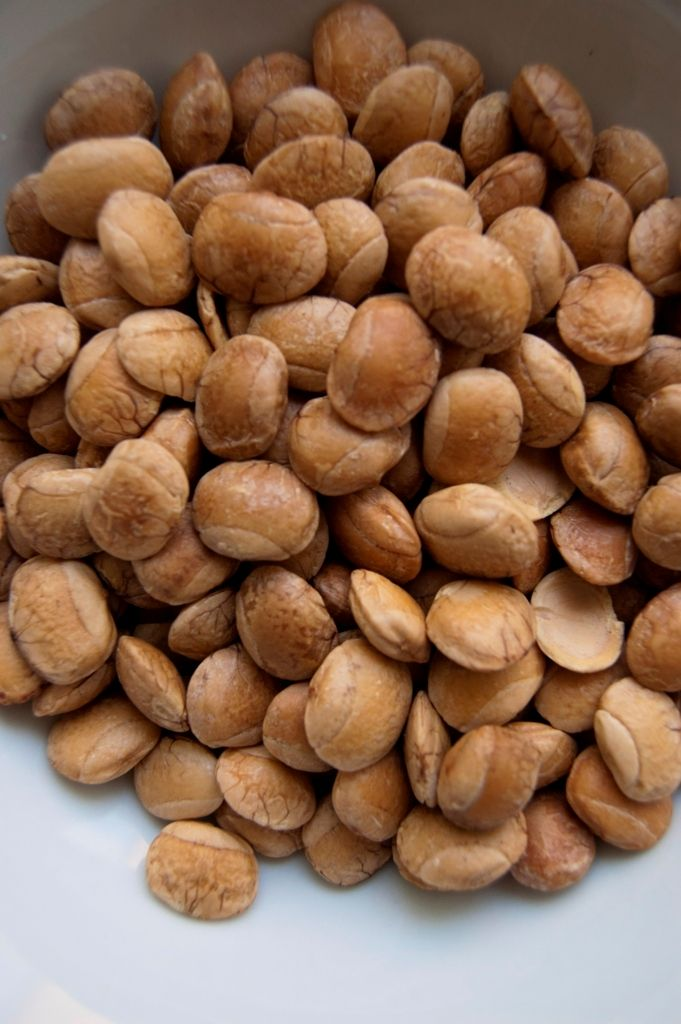 Sacha Inchi occasionally referred to as a peanut; it is not a nut at all, but rather a seed. It can be eaten whole or pressed into oil. It's primarily composed of unsaturated fatty acids, omega-3 and omega-6. Consuming these fatty acids can prevent cancer, coronary heart disease, hypertension, and rheumatoid arthritis from happening. Overall, #sachainchi is a powerful anti-aging food because it promotes longevity by adding brain function, heart function, and supporting the immune system.