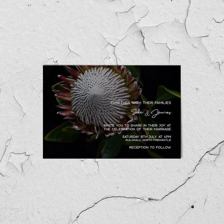 "PARKER & PABLO (@parker.and.pablo) on Instagram: ""• PROTE-YASS • What's better than a Protea? A dark and moody one on this gorgeous mod invite is…"""