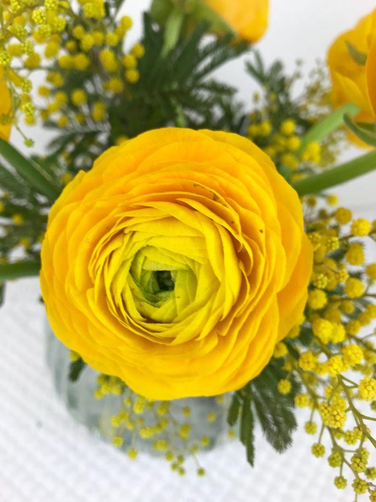 Die besten 25+ Gelbe blumen Ideen auf Pinterest Blumen, gelbe - rose aus stein deko