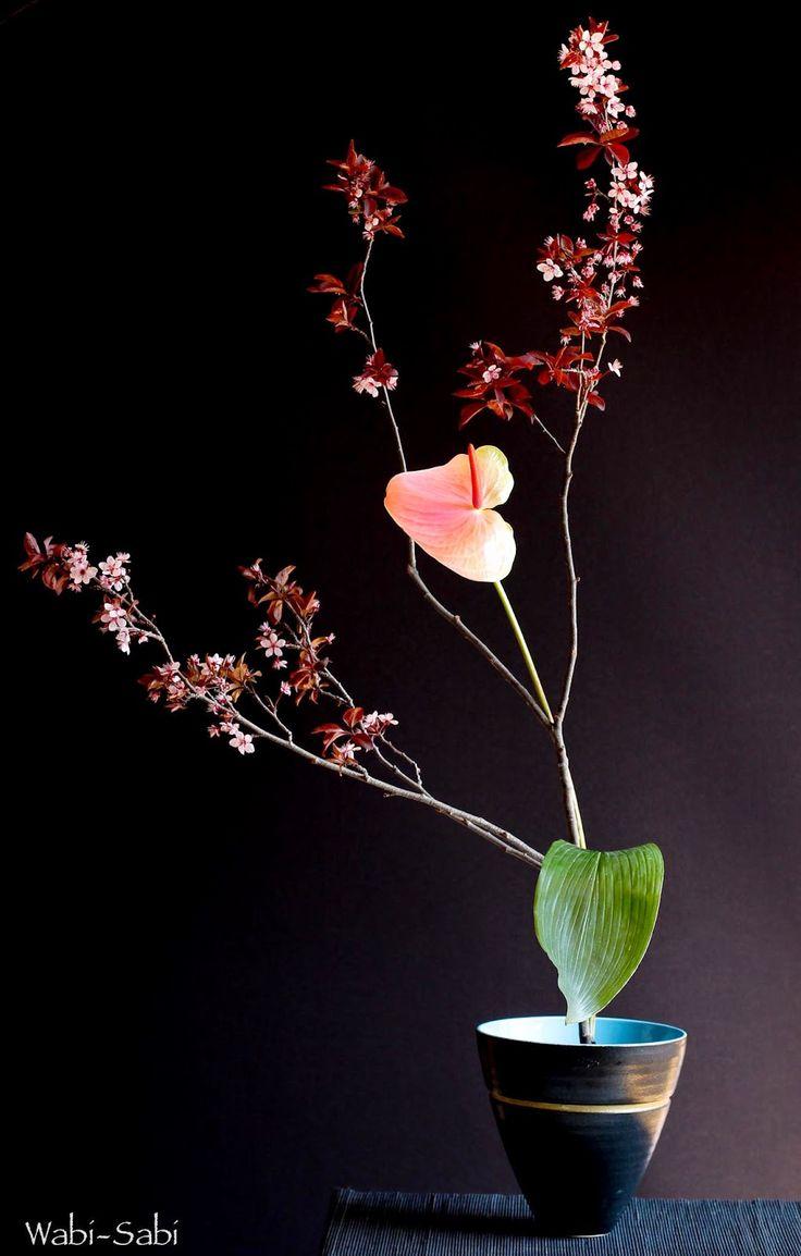 WABI-SABI Prunus Anthurium en Aspidistra